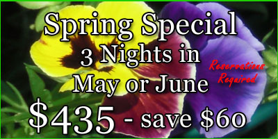 Spring Special - Save $60